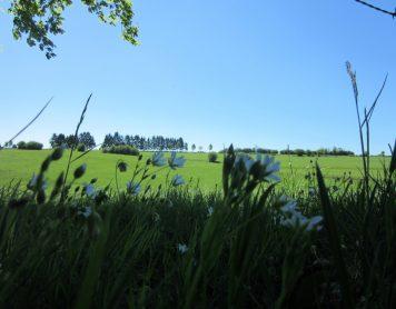Lang Weekend Ardennen