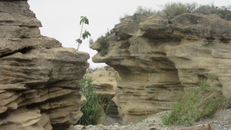 Cabo de Gata 4