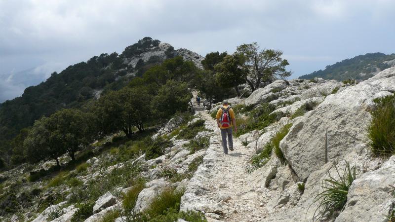 Mallorca 10