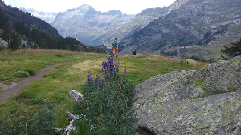Pyreneeën 11