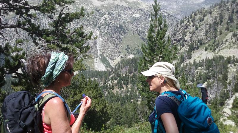 Pyreneeën 6