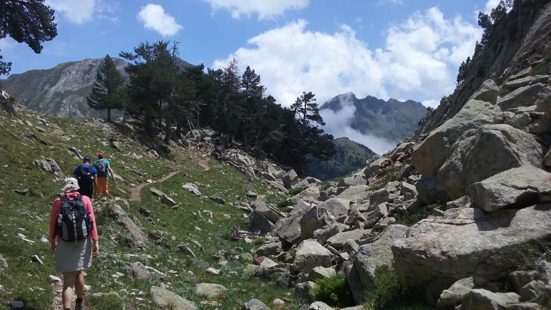 Pyreneeën 7