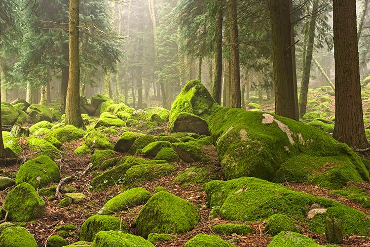portugal-peneda-geres-national-park