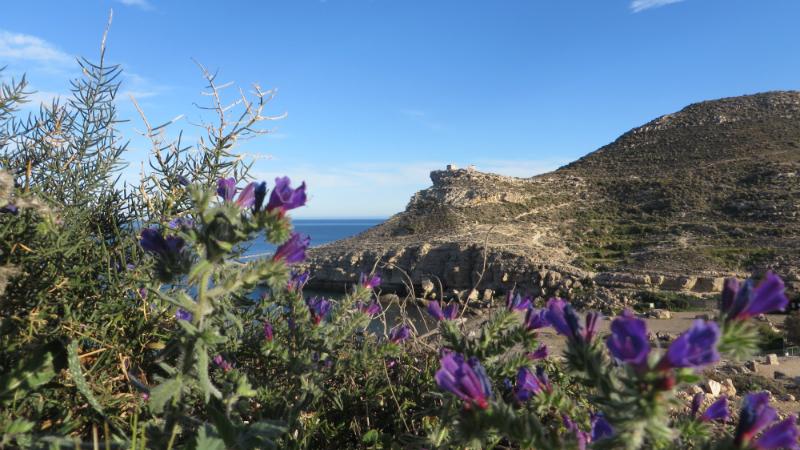 Cabo de Gata 14
