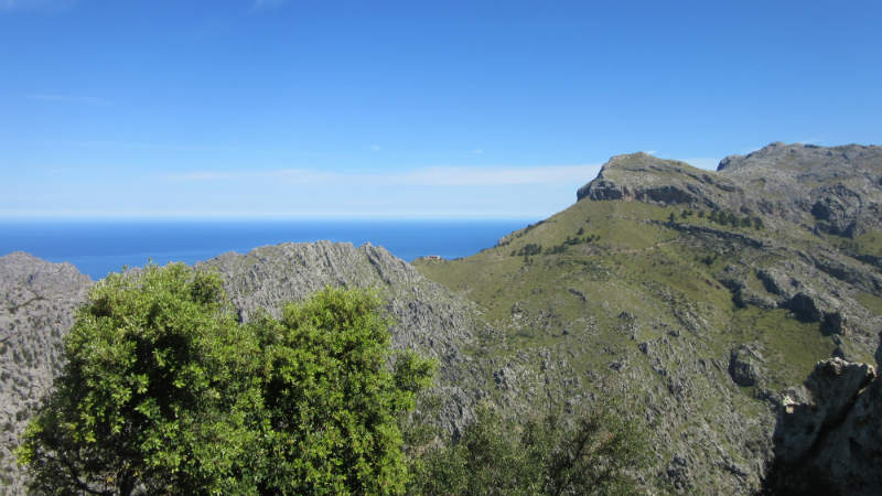 Mallorca 9