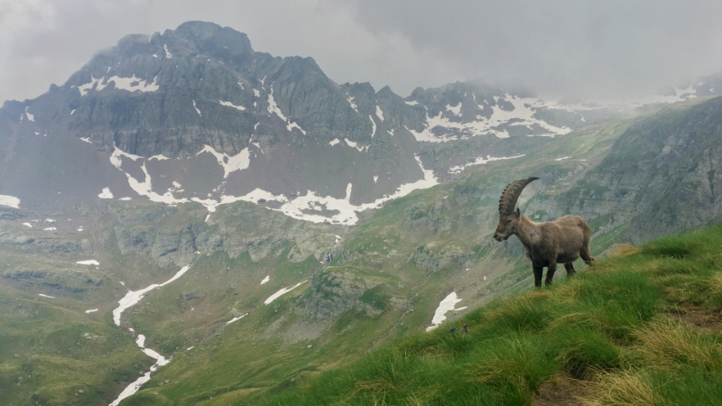 Orobische Alpen 14