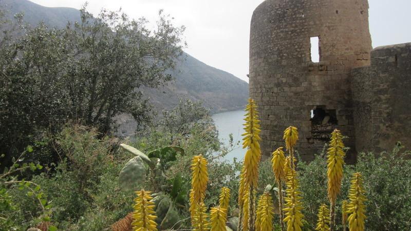 Overwinterreis Cabo de Gata 14