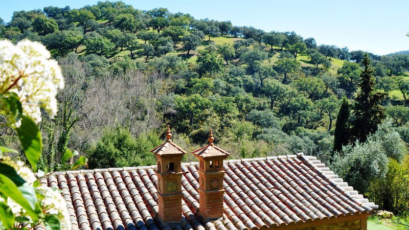 Slide 21 - Aracena-Linares-08